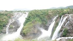 Best time to Visit: Due to heavy water inflow during monsoon, most of the tourists prefer to travel Shivanasamudra waterfalls in monsoon season (From June to September) when waterfall look gorgeous in its full swing. Winter/Summer season provide you an opportunity to reach to the bottom of the waterfalls and witness the exquisite natural beauty. Call now for booking 080 26593718 / 6444 6222 or Whatsapp at 9880467402