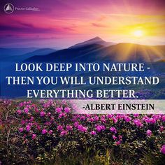 Ecotherapy (also known as green therapy, nature therapy, and earth-centered therapy) -- can have regenerative powers, improving mood and easing anxiety, stress, and depression.  Time for a walk … #PGI #AlbertEinstein