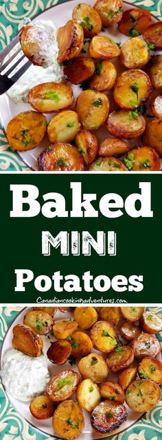 Looking for an awesome appetizer? Try my Baked Mini Potatoes with Tzatziki sauce!  #baked #potatoes #mini #Tzatziki #sauce Roasted Mini Potatoes, Greek Potatoes, Garlic Baked Potatoes, Healthy Baked Potatoes, Healthy Potato Recipes, Vegetable Recipes, Roasted Potato Recipes, Fun Easy Recipes, Quick Dinner Recipes