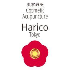 アクセス・マップ – 錦糸町の美容鍼灸院 Harico|東京|今話題の美容鍼|美顔・小顔・美肌・体調不良・疲労回復・生理痛などに効果的