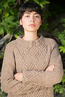 1000+ images about Fiona Ellis Knitwear Designs on Pinterest Pattern librar...