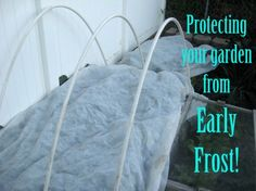 Protecting your garden from Early Frost us easy with just a few inexpensive fabric row covers! These simple covers will extent your gardening season! Growing Greens, Growing Herbs, Row Covers, Garden Guide, Garden Ideas, Winter Vegetables, Garden Pests, Grow Your Own Food, Autumn Garden