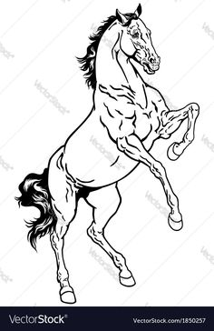 horse,rearing mustang,black and white illustration Horse Drawings, Animal Drawings, Horse Outline, Horse Rearing, Banner Drawing, Horse Coloring Pages, Yarn Painting, Horse Illustration, Horse Silhouette