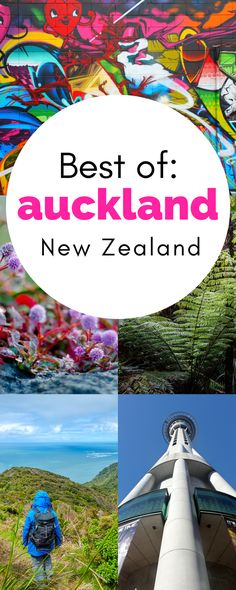 Headed to New Zealand soon? Come check out all the things to do to in Auckland! Even with just a weekend in Auckland, you can still see and do so much! Moving To New Zealand, Visit New Zealand, New Zealand Travel, Wanaka New Zealand, Auckland New Zealand, The Places Youll Go, Places To Visit, New Zealand Cruises, Stuff To Do