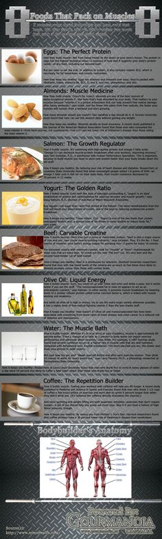 8 Foods That Pack on Muscles - Just going to gym and lifting weights wont be enough to pump up your muscles, proper diet and proper food also contributes a lot. Here are 8 foods that will help you get your desired figure. Nutrition Quotes, Nutrition Tips, Fitness Nutrition, Health And Nutrition, Holistic Nutrition, Nutrition Education, Nutrition Activities, Fitness Infographic, Infographics