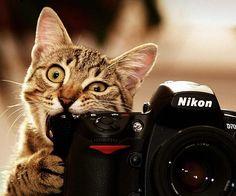 say cheese!!!