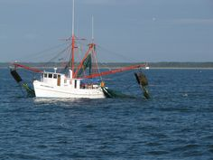 Local shrimpers even offer visitors the chance to buy fresh seafood right off the boat to take home. Calabash Seafood, Shrimp Boat, Upscale Restaurants, Boat Art, Fishing Adventure, Deep Sea Fishing, Fresh Seafood, Southport, Sunset Beach