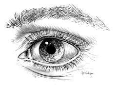 This is the pen & ink eye illustration that Jerry... | Stamps ...
