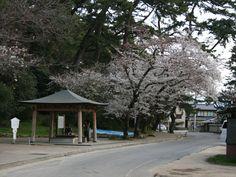 琴弾公園(香川県観音寺市)