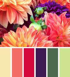 Spring mood in flower colour palette
