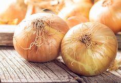 Hvad er det egentlig for nogle løg, vi bruger i vores madlavning og dyrker i vores haver? Bliv dus med rødløg, salatløg, almindelige løg, skalotteløg og forårsløg.