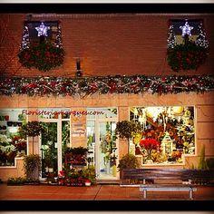 Decoración navideña de la fachada de floristeriamarques.com de Ponferrada. Christmas windows