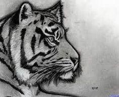 Bildergebnis für Sketch