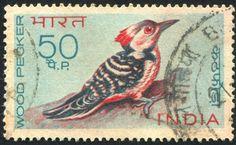 India 1968-Pájaro Carpintero