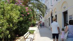Mali Losinj ~ Croatia 👋🏼 ~ Summer Holidays ☀️ ~ ⛵️~ Ani Life 🌸 Croatia, Aqua, Street View, Holidays, Summer, Life, Vacations, Holidays Events, Holiday