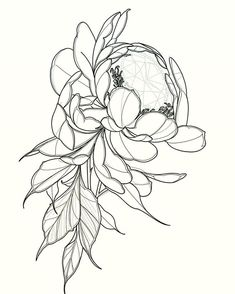 New School Inspiration Neo Traditional Roses, Neo Traditional Tattoo, Blackwork, Rose Tattoos, Flower Tattoos, Animal Line Drawings, Tattoo Apprenticeship, Mastectomy Tattoo, Japanese Dragon Tattoos