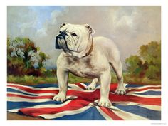 English Bulldog with English Flag decoupaged on wood. A must for any English Bulldog fan. Size is 8.5X11inches. Matte finish. Ready to hang on any wall.