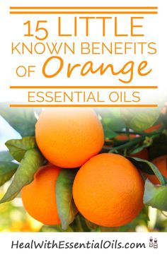 15 Little Known Benefits of Orange Essential Oil - We LOVE Orange Essential Oil! Good for the skin, boosts your immune system, and it smells delicious! Orange Essential Oil, Essential Oil Uses, Doterra Essential Oils, Natural Essential Oils, Healing Oils, Aromatherapy Oils, Natural Healing, Natural Oils, Young Living Oils