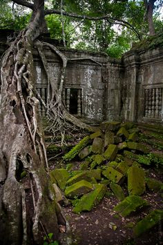 Nature takes over Abandoned Buildings, Abandoned Places, Temple Ruins, As Time Goes By, Castle Ruins, Elvish, Exotic Places, Famous Places, Nature Scenes
