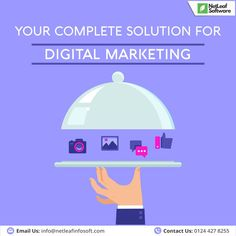 Website Designing & Development Company in Gurgaon Mail Marketing, Digital Marketing Services, Seo Services, Online Marketing, Accounting Software, Competitor Analysis, Software Development, Business Design