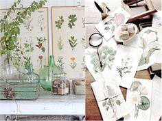 ¡Refréscate con la mejor decoración tropical para tu hogar!