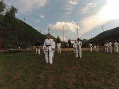 Karate Traditional Karate, Traditional, Animals, Animales, Animaux, Animal, Animais