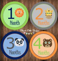Baby Boy Monthly Stickers Milestone от VibrantLittleDesigns
