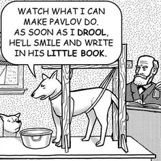 More nerd psych humor! Psychology Jokes, Psychology Major, School Psychology, Funny Commercials, Nerd Humor, Dog Humor, Geek Humour, Science Humor, Science Comics