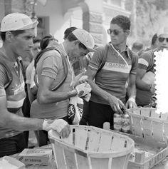 Fausto Coppi eating an orange. Tour de France 1952