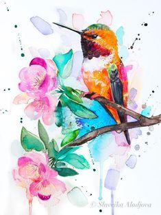 Rufous hummingbird watercolor painting print by Slaveika Aladjova