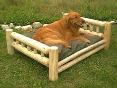Latest doggie beds for both large & small dogs. Incredible dog bed,dog steps for beds or even get, dog steps for beds or even bed bug dogs Sounds good then Visit link above for more options -- Best dog bed Large Breed Dog Beds, Big Dog Beds, Cool Dog Beds, Pet Beds, Doggie Beds, Doggies, Large Dogs, Small Dogs, Dog Status