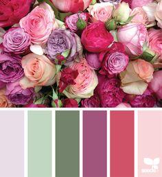 { color blooms } image via: @lucie_quintaine