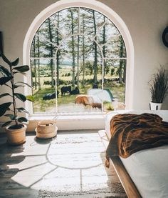 """""""What do you think of this bedroom design? Arched Windows, Big Windows, Modern Windows, Modern Interior Design, Interior Design Living Room, Room Goals, Home Design Plans, House Goals, Dream Bedroom"""