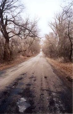 """Witch Road"""" (Callan Road), Rosendale, WI Reputed Phenomena: Years ago, a witch… Spooky Places, Haunted Places, Abandoned Places, Ghost Hauntings, Scary Stories, Ghost Stories, Haunted History, Most Haunted, Ghost Towns"""