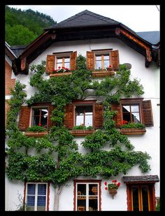 One of our honeymoon hotels.  One of the most scenically beautiful places on earth!  Hallstatt, Austria