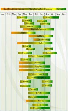 When to plant veggies