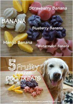 Fruity Frozen Dog Treats