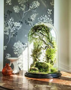 "Terrarium ""Mirage of an enchanted forest"", handmade, artificial plants arrangement, gift Terrarium forestiers de plantes artificielles par VERTplusSAUVAGE Plante Sous Cloche, Ideas Florero, Bonsai, Self Sustaining Terrarium, Forest Flowers, Forest Plants, Decoration Plante, Office Plants, Deco Floral"