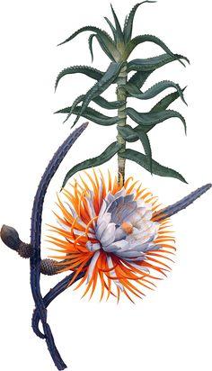 Album Design, Flower Prints, Art Direction, Embroidery Designs, Behance, Drawings, Floral, Creative, Flowers