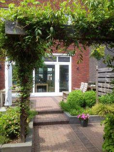 King Charles Spaniel, Cavalier King Charles, Garden Inspiration, Garden Ideas, Oasis, Garden Design, Sidewalk, Outdoor, Hoe