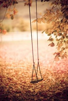 Photographs and words: Swing #daydreams #swing #love #quote
