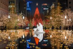 Christmas Temple Square 2013 pond PLUS time lapse video of Temple Square Lights
