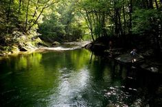 Best swimming holes in Upstate NY: 6 natural pools to take a relaxing dip http://www.newyorkupstate.com/outdoors/2015/05/best_swimming_holes_in_upstate_new_york_ny_hidden.html