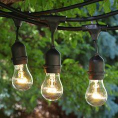 48 ft Black Commercial Medium Suspended Socket String Light & A15 Clear…