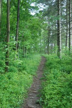 White Tail Crossing: Trails behind 150' lots located in Waterloo, ON