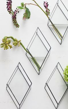 1012 TERRA, DIAMOND VASES: wall-mounted perfection.