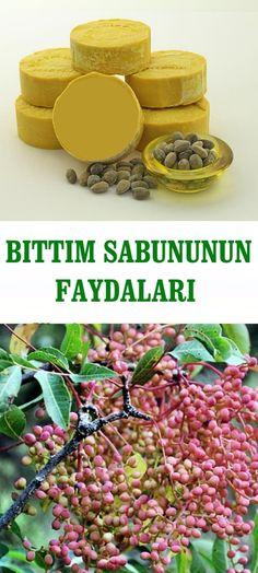 BITTIM SABUNUNUN FAYDALARI