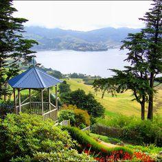 Larnach Gardens, Dunedin, New Zealand Auckland, Places Around The World, Around The Worlds, Dunedin New Zealand, New Zealand South Island, New Zealand Travel, What A Wonderful World, South Pacific, Australia Travel