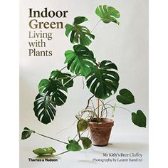 Bookspeed Indoor Green Living With Plants Book: For centuries, plants have transformed interiors. Today the plant-filled home is an inspiration to every avid shelter-blog reader or expert Pinterest-board maker. Author Bree Claffey journeys into the interi