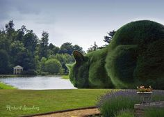 This is the very first surrealist image of The Topiary Cat created by Richard. It was based upon a photograph he had taken of Hall Barn, Beaconsfield, with a photo of Tolly, his Russian Blue Cat, which was taken to match the huge abstract 'cloud' topiary by the lake there, comped in. Due to someone cropping out his name and claiming it as 'real' it became viewed by thousands of Facebook visitors ♥≻★≺♥